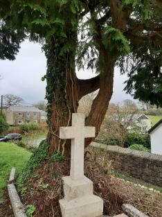 Grylls tree 3